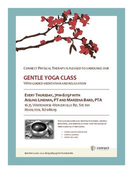 gentle yoga class connect pt