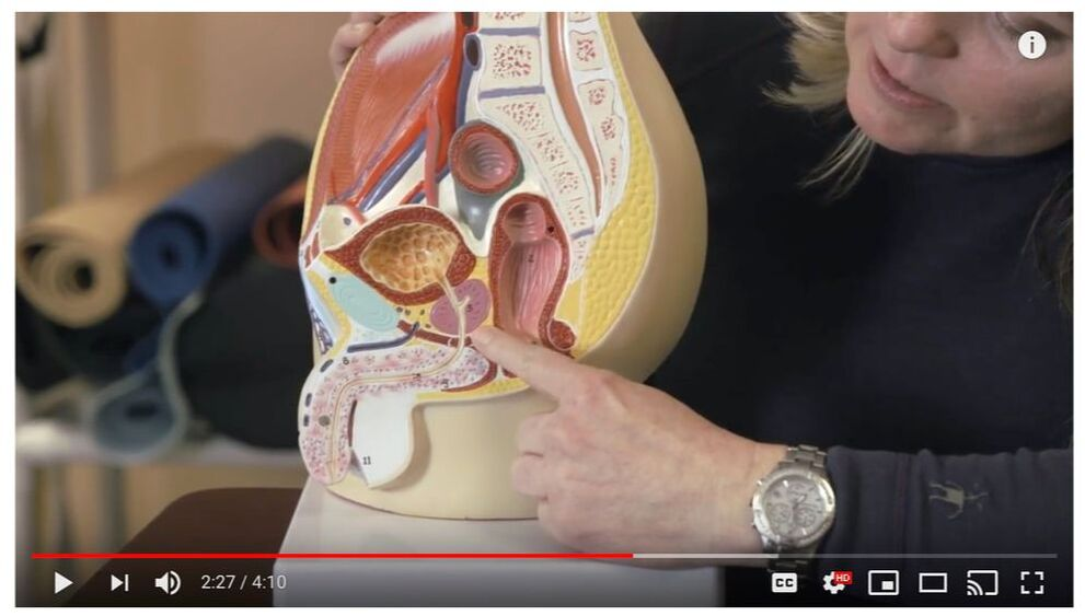 Male pelvic pain video from Becca Ironside